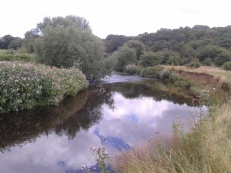 Route of Mad Hatter's Race, Reddish Vale